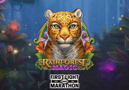 Rainforest Magic Bingo